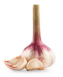 Garlic bulb Royalty Free Stock Photo