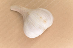 Garlic bulb Royalty Free Stock Photos