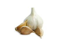 Garlic bulb and single cloves isolated on white Background Royalty Free Stock Photography