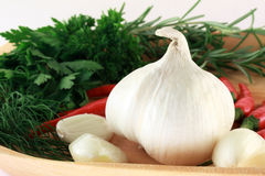 Garlic bulb with spices. Garlic bulb in front with garlic cloves, red hot chili paprika and green parsley and rosemary Stock Photos