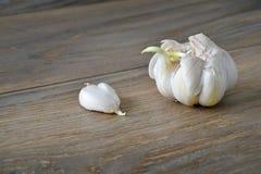 Garlic bulb Royalty Free Stock Image