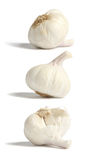 Garlic bulbes Stock Photography