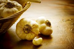 Garlic Bulbs Stock Image