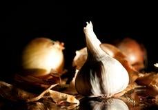 Garlic and bulbs Stock Photography