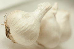 Garlic Bulbs. Three Garlic Bulbs in a row with the one in front being promenant Royalty Free Stock Images