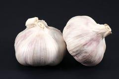 Garlic bulbs. Two garlic bulbs isolated on a black background Stock Photos