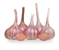 Garlic bulbs. With cloves on white background stock images
