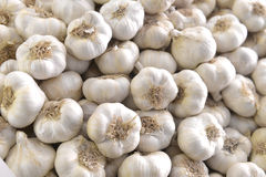 Free Garlic Bulbs Stock Photo - 49430250