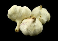 Garlic bulbs Royalty Free Stock Photo