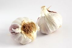 Garlic bulbs (Allium sativum) Stock Image