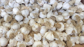 Garlic bulbs. Bunch of garlic cloves for sale at grocery market Stock Photography
