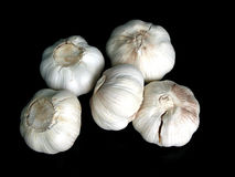 Garlic bulbs on black. Background Stock Images