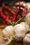 Garlic Bulbs and Cayenne Peppers Still Life Royalty Free Stock Photos