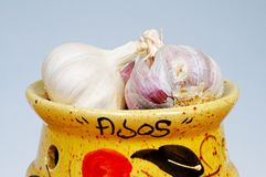 Garlic bulbs in ceramic pot. Royalty Free Stock Photos