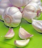 Garlic bulbs and cloves Royalty Free Stock Image