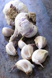 Garlic Bulbs and Cloves on Rustic Timber Royalty Free Stock Photos