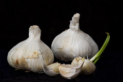 Garlic Bulbs and Cloves Royalty Free Stock Images
