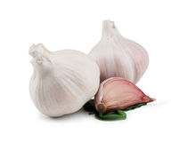 Garlic Bulbs and Cloves on white Stock Images