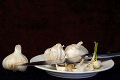 Garlic Bulbs and Cloves on White Plate with Knife Stock Photos