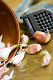 Garlic bulbs with crusher Royalty Free Stock Photography