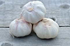 Garlic bulbs details Royalty Free Stock Images