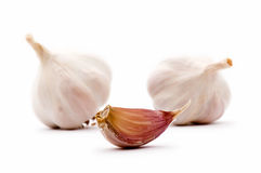 Garlic bulbs and garlic clove Stock Images