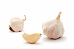 Garlic bulbs and garlic clove - allium Stock Images