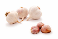 Garlic bulbs and garlic cloves - allium Stock Photo