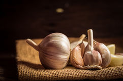 Garlic bulbs with garlic cloves Stock Images