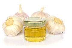 Garlic bulbs and jar of honey as healthy eating Royalty Free Stock Image