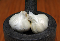 Garlic bulbs and mortar and pestle Stock Photography
