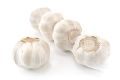 Garlic bulbs in net Stock Images