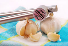 Garlic bulbs and press Royalty Free Stock Photo