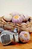 Garlic bulbs and press. Royalty Free Stock Photos