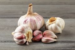 Garlic bulbs, with some purple cloves on gray wood table. stock photos