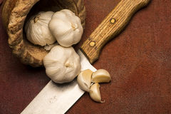 Garlic bulbs. Three garlic bulbs in a small clay brown pot are flowing out on a big knife blade with some cloves placed on the blade Royalty Free Stock Photo