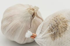 Close-up image of dried Garlic bulbs shown with the white, plastic netting in which they are sold in. The Garlic bulbs are to be used in food preparation. The Stock Photography