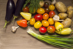Garlic bulbs and vegetables still life, potato, green onion, pepper, tomatoes and eggplant. Top view. Stock Photography