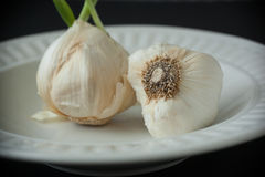 Garlic Bulbs on Whie Plate Royalty Free Stock Image