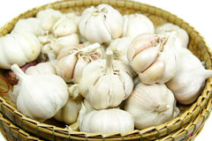 Garlic bulbs in a wicker basket Stock Image