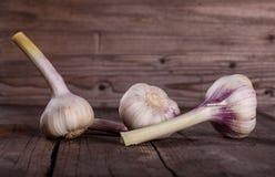 Garlic Bulbs Royalty Free Stock Photography