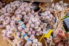 Garlic bunches. From french farmer`s market Royalty Free Stock Images
