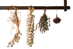 Garlic bunches and herbs Stock Photo