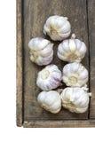 Garlic bunches Royalty Free Stock Photos