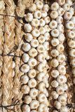 Garlic bundles strings food texture background Stock Photo
