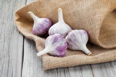 Garlic on Burlap sack Royalty Free Stock Photography