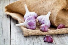 Garlic on Burlap sack Stock Photo