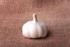 Garlic on burlap Stock Photo