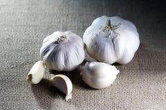 Garlic On Canvas Stock Image