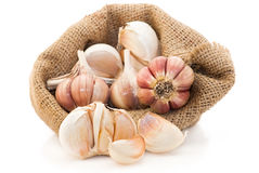 Garlic in canvas sack Royalty Free Stock Photos